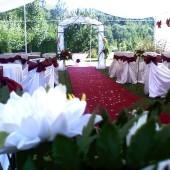 Nunti la cort